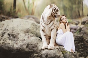白いドレスの女性とホワイトタイガー