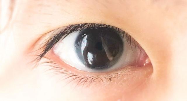 濃いブラウン(こげ茶)の瞳