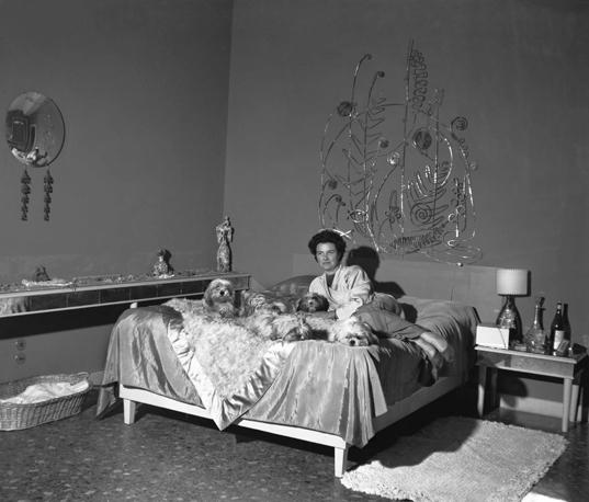 03_peggy_camera-letto-cani_672-458_resize
