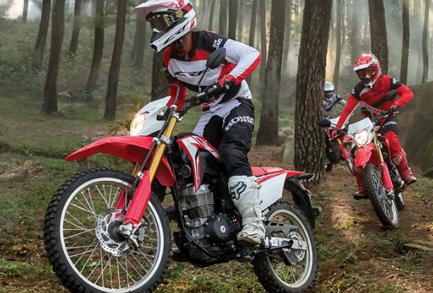Perbedaan Trail vs Supermoto vs Enduro vs Motocross