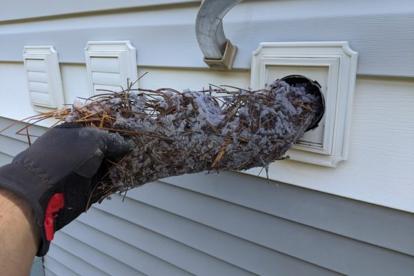 vent busters bird nest removal