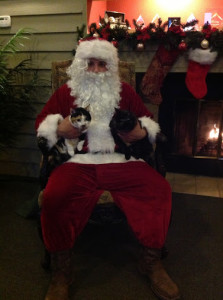 Santa Visit's Raintree2