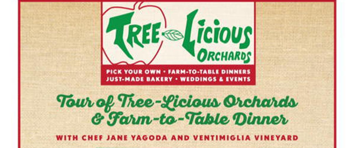 TreeLiciousFlierSummer2018.v2-crop