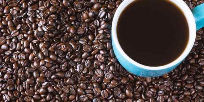 Let's Decide Between Ninja Coffee Bar vs Keurig K Café
