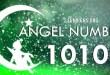 Angel numbers to your Guardian Angel