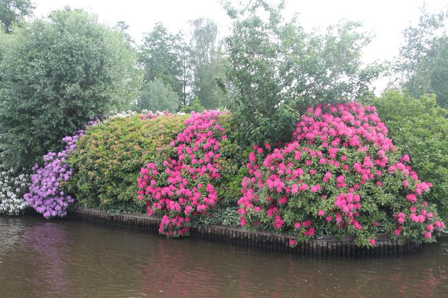 D:\jecke-hexe\Pictures\Solitaire\Friesland 2018\9 bis Tjeukemeer\IMG_2884.JPG