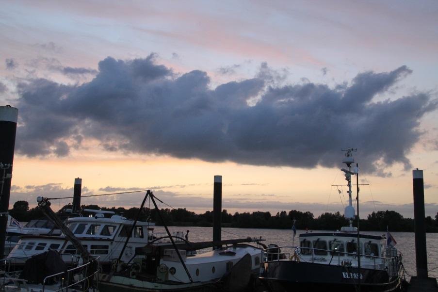 F:\Solitaire\Biesbosch 6_15\Fotos\8 bis Lithse Ham 07_07_15\IMG_1083.JPG