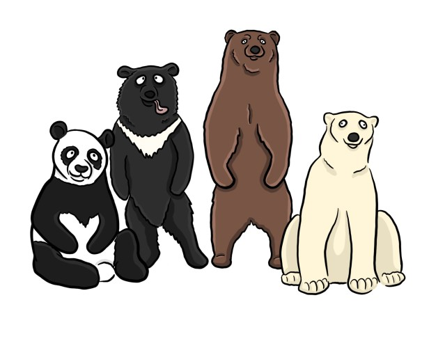 Cartoon of different bear breeds representing recycled content offered in different forms