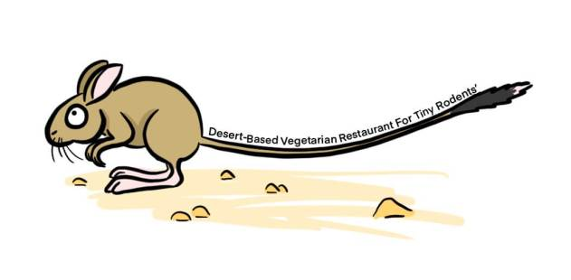 Cartoon of desert mouse representing long tail keywords
