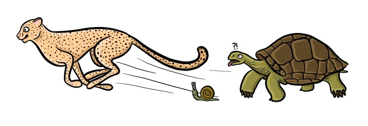 Cartoon of cheetah beating tortoise and snail in a race.