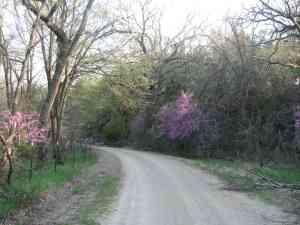 Breathtaking Kansas in the Spring