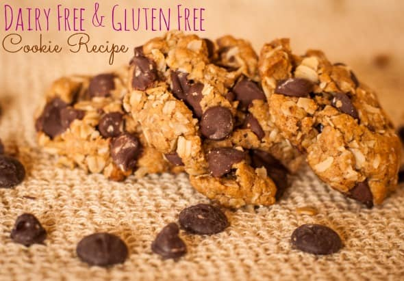 DFGF Dark Chocolate cookie recipe
