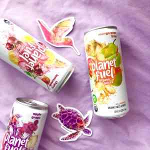 3 cans of Planet Fuel Organic Juice