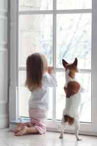 Home Decorating Safety: Window Blind Cord & Kids