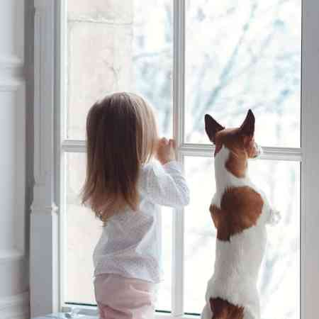 Young girl and dog looking out the window