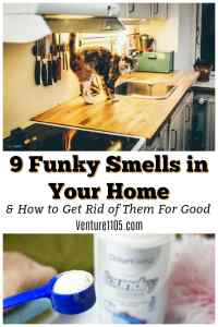9 Funky Smells In Your Home & How To Get Rid of Them For Good
