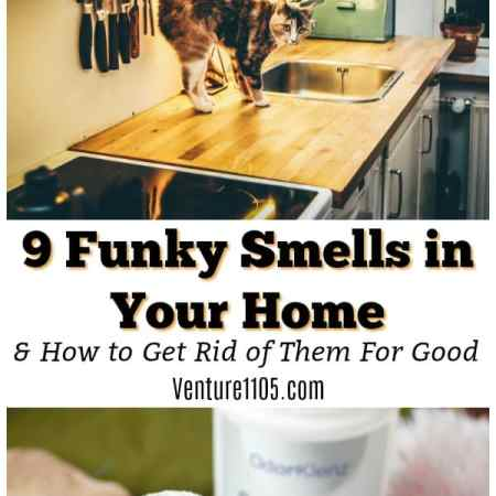9 Funky Smells In your Home and How to get rid of them for good