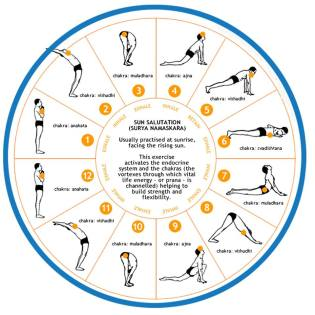 Image from https://healeyinstitute.org/2013/11/30/sun-salutations-in-a-nutshell/