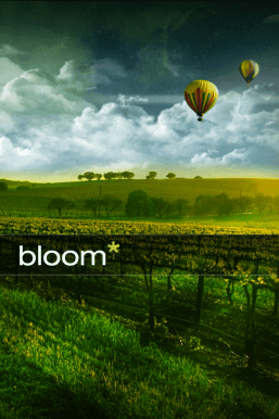 Bloom splash page