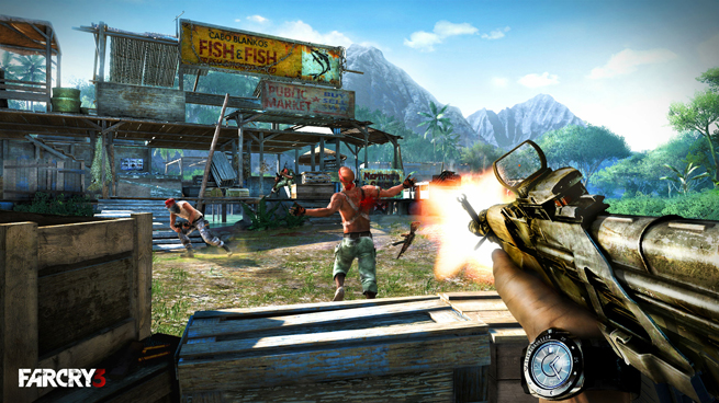 Far Cry 3_H