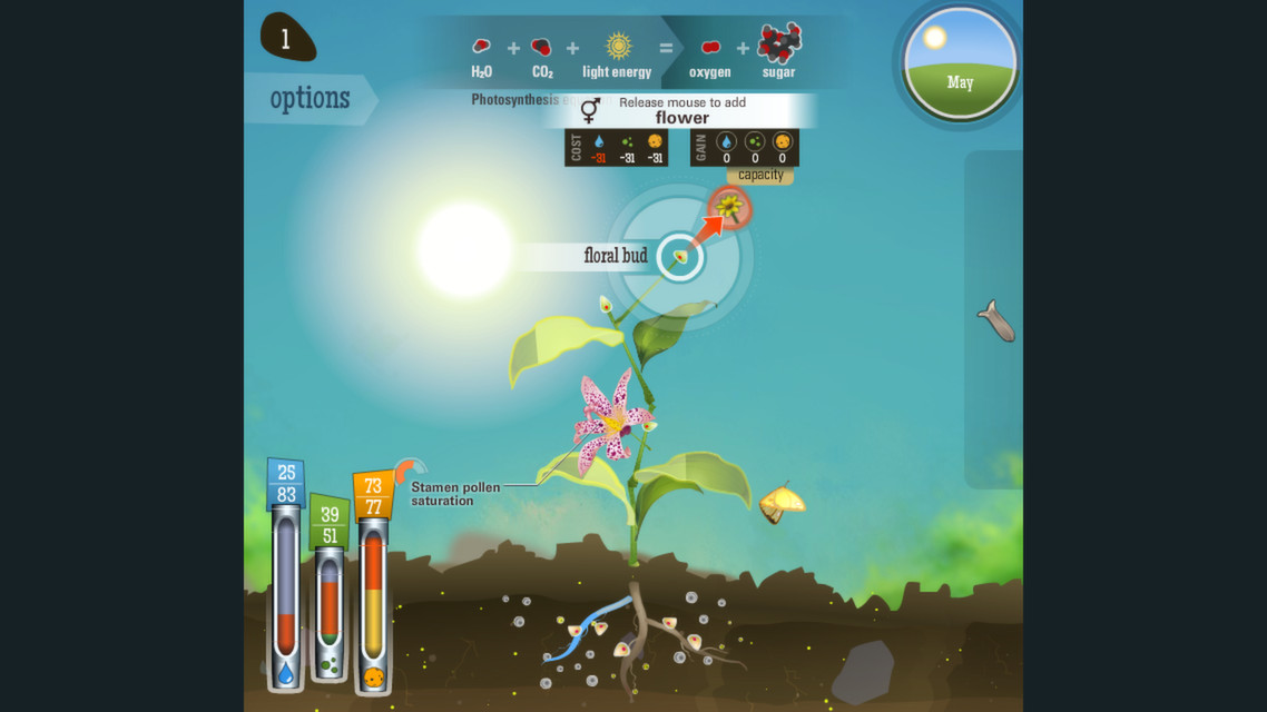 Reach for the Sun is a gaming lesson in biology.