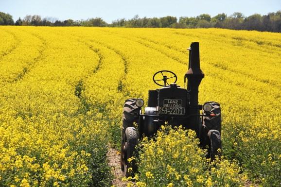 BioLumic raises $5 million to harness ultraviolet mild to enhance crop yields