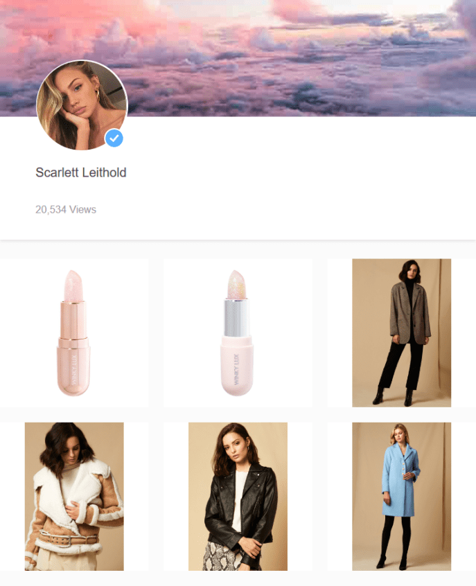 Screenshot 2019 05 14 Scarlett Leithold - Storr lets you open an online retail store without any of the effort or overhead