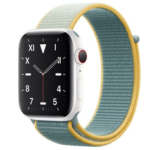 Apple Watch SE puts profits over public health by nixing ECG features 2