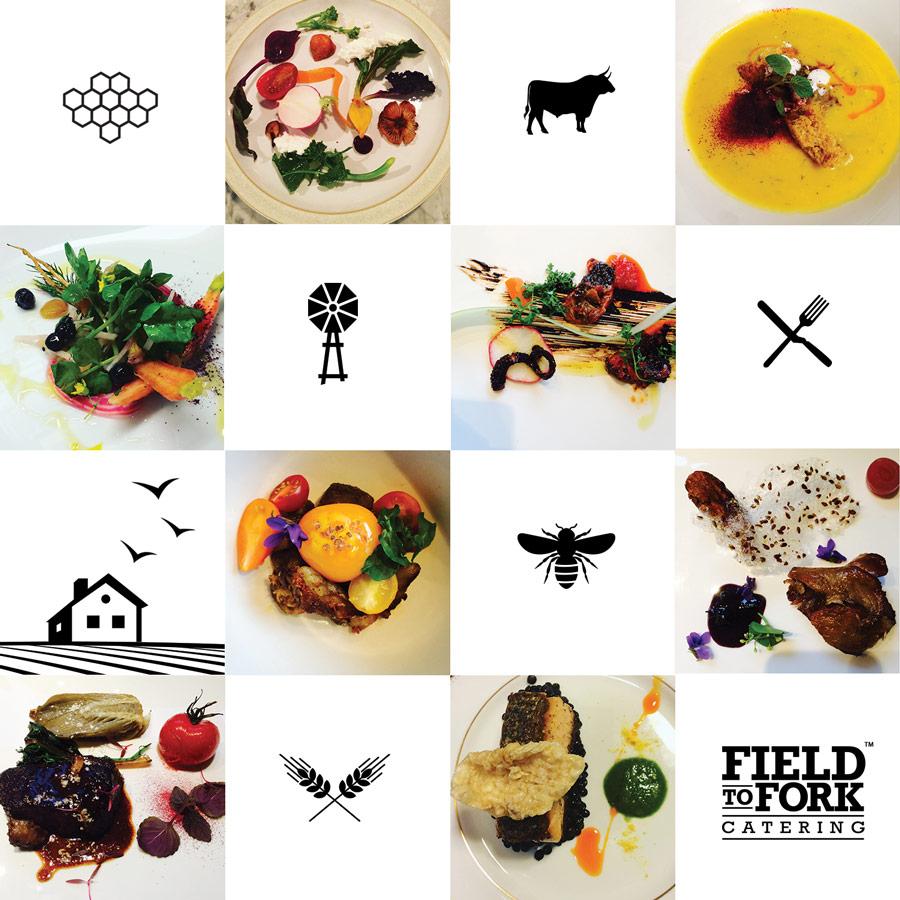 FieldToFork