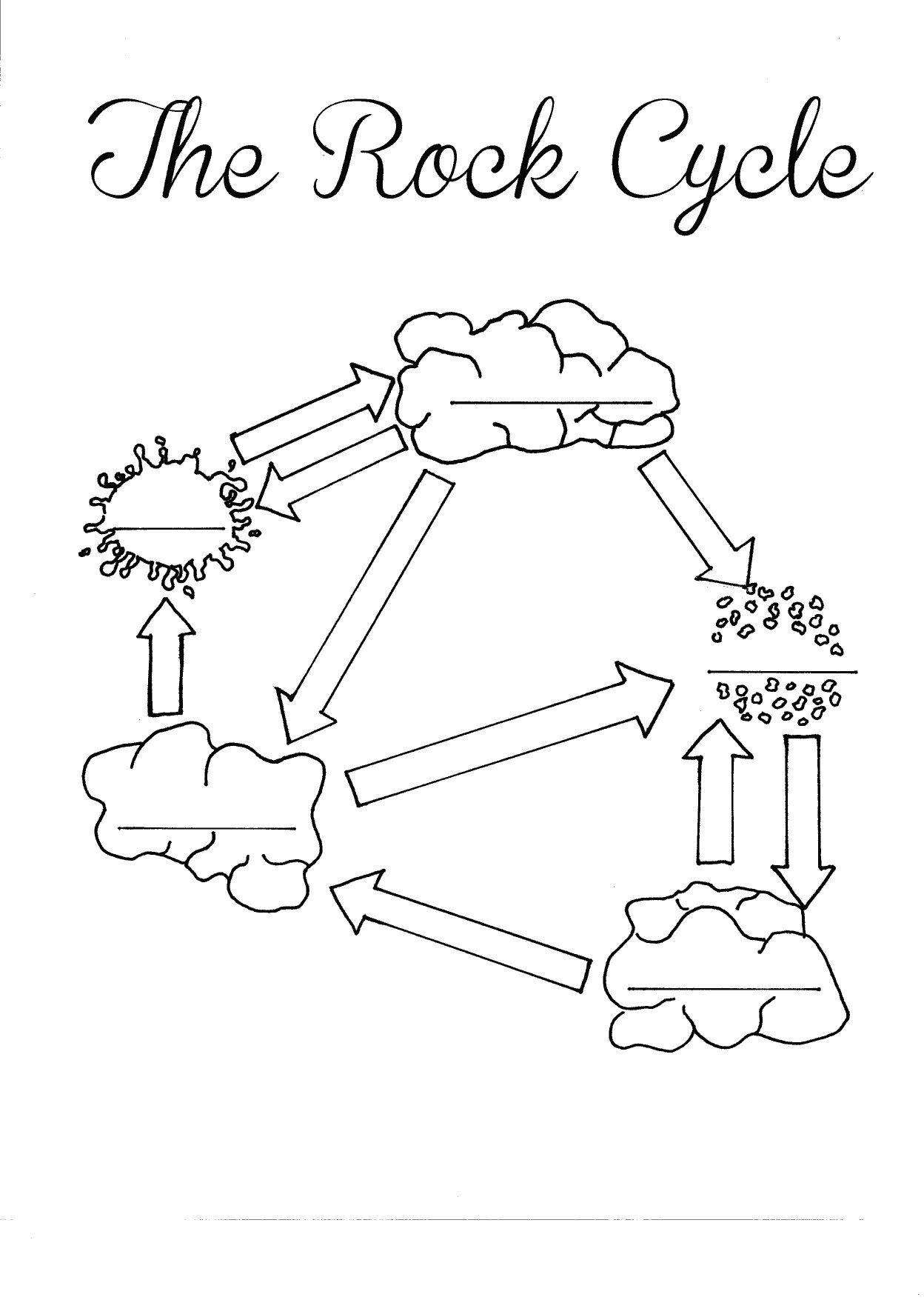 Carbon Cycle Diagram Worksheet