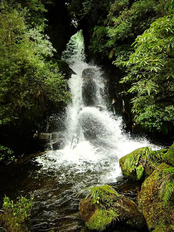 Waiatiu Falls