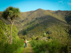 Rimutaka Cycle Trail towards Cross Creek