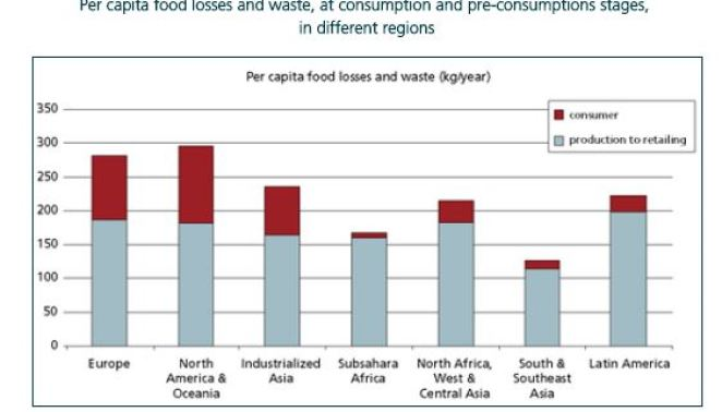 FAO food waste