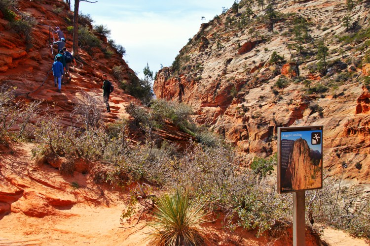 Crowds on the chains at Angels Landing in Zion National Park