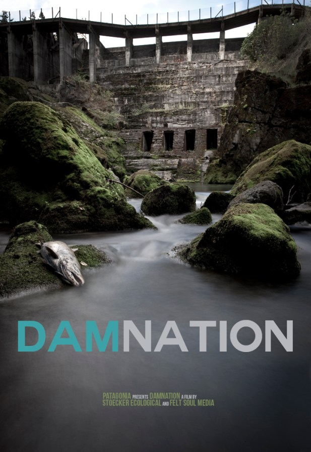 DamNation Film