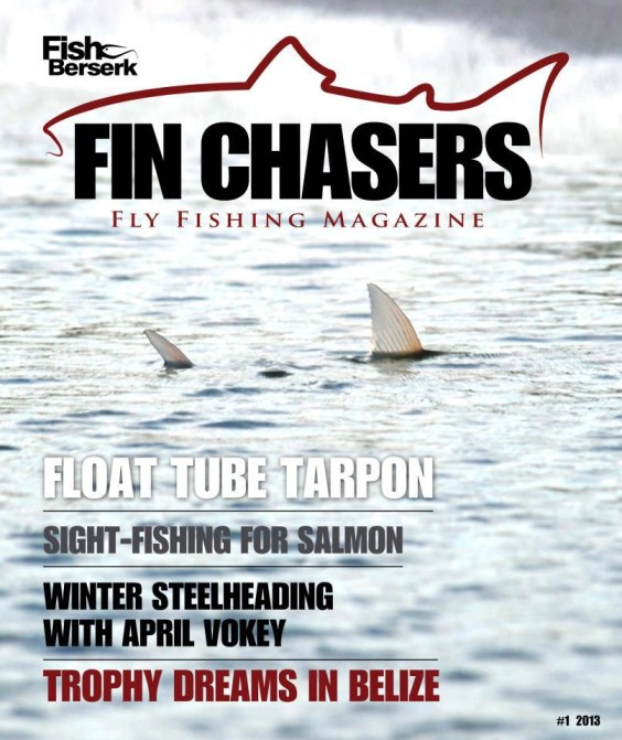 Fin Chasers