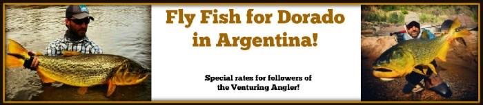 Golden Dorado Fly Fishing
