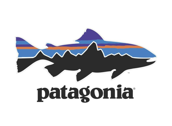 Patagonia trout