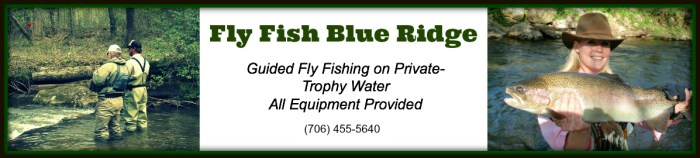 Fly Fish Blue Ridge Banner