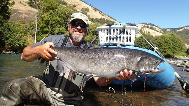 Jeff Brazda Chinook Salmon