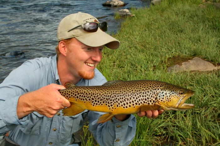 David Knapp Brown Trout
