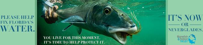 bonefish tarpon trust ad