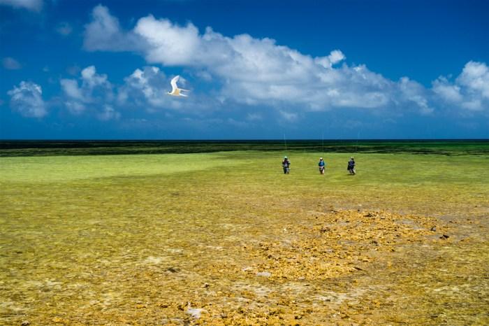 klug-providence-atoll