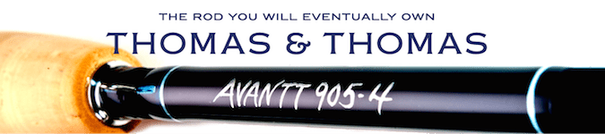 thomas-and-thomas-banner