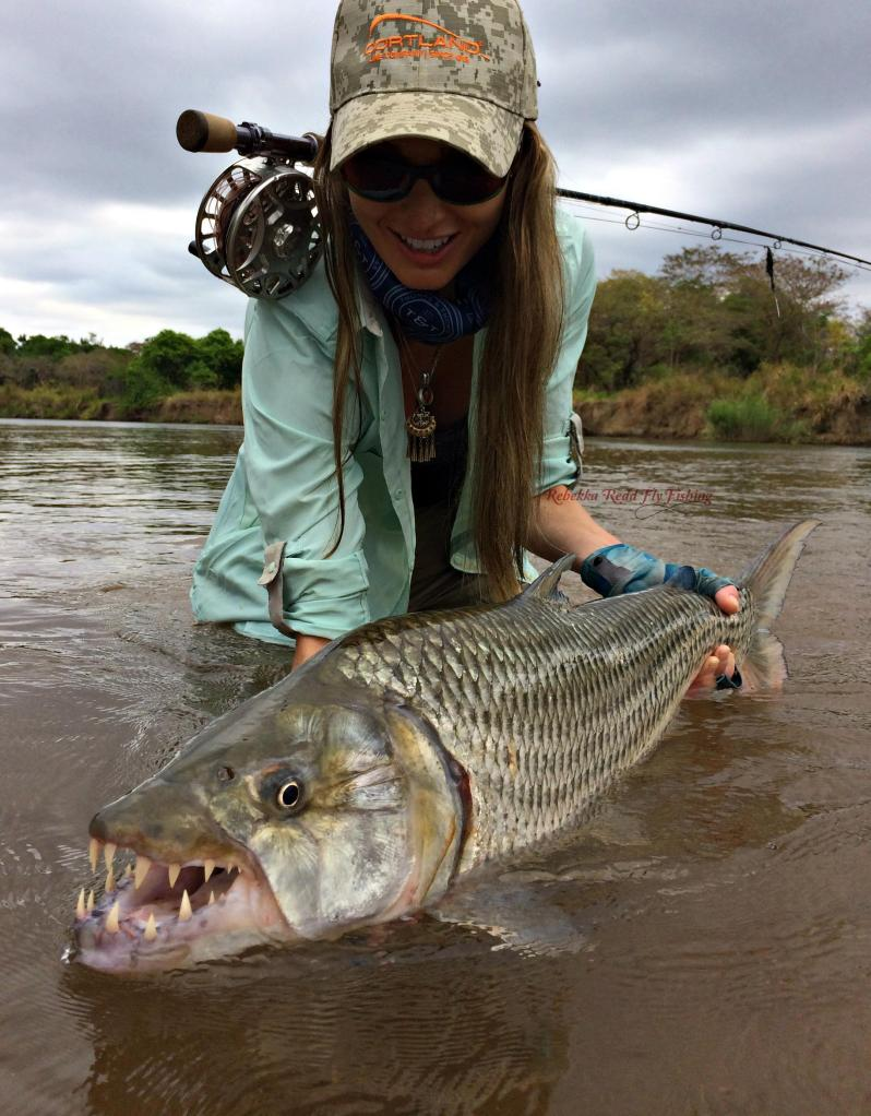 rebekka-redd-tigerfish
