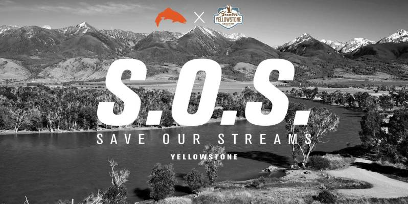 Simms Save Our Streams