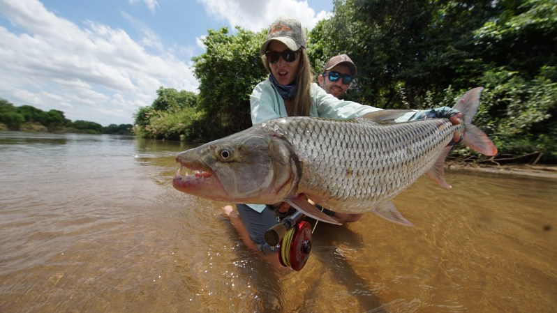 Rebekka Redd tigerfish