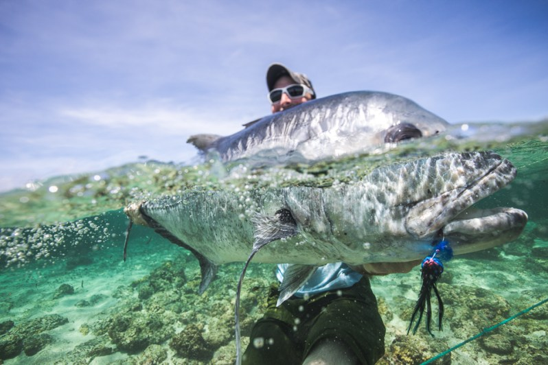 Matt Jones Cosmoledo seychelles giant trevally