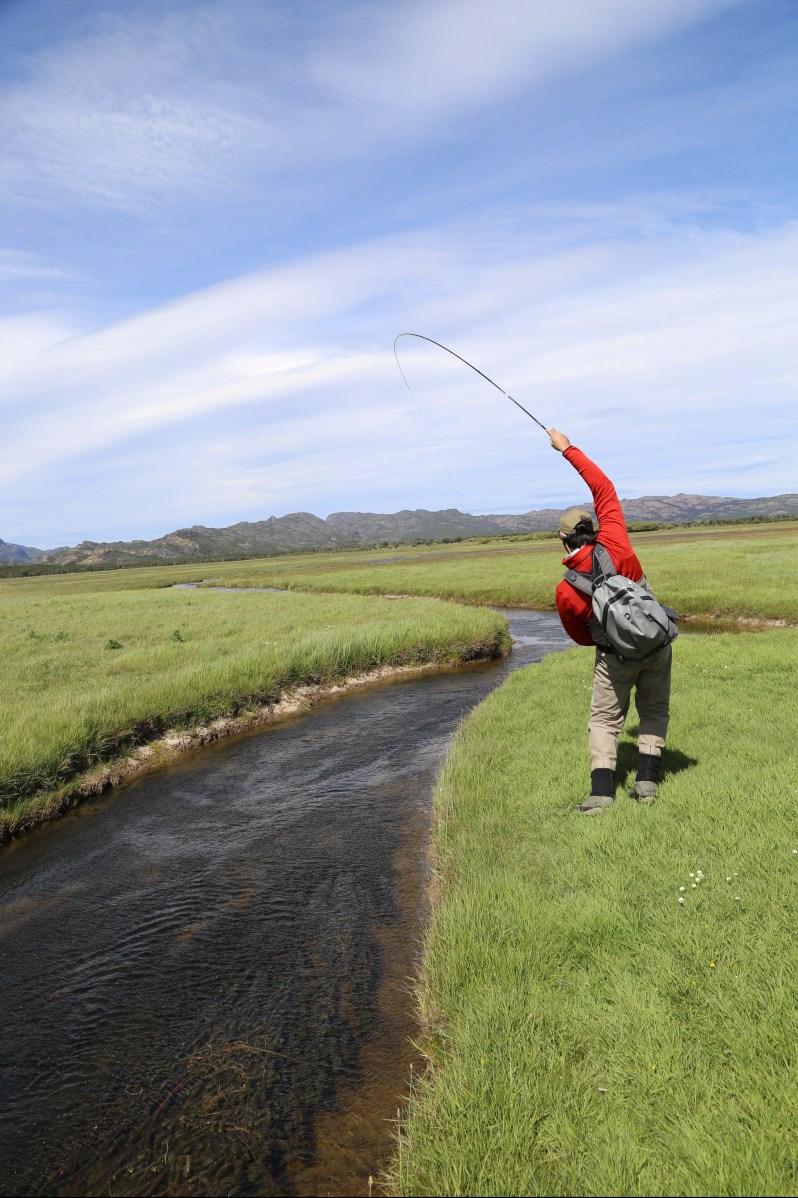 Kyle-Kolodziejski-trout.jpg