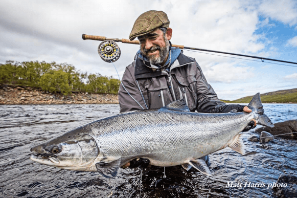 Kola Atlantic salmon
